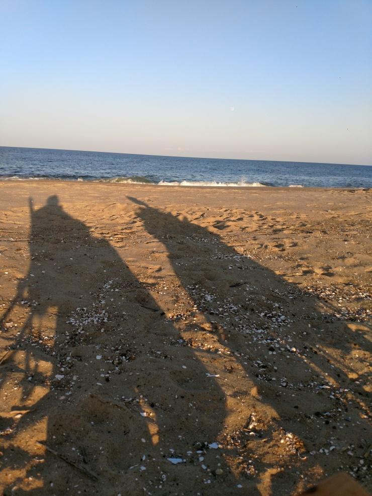 shadows2
